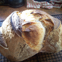 pain de campagne