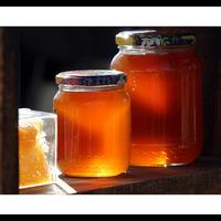 miel de lavande