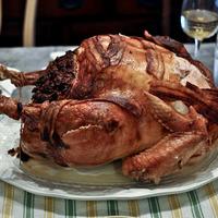 Dinde pour Thanksgiving