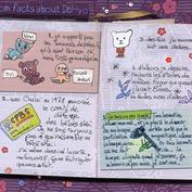 Le Journal de Ma Life
