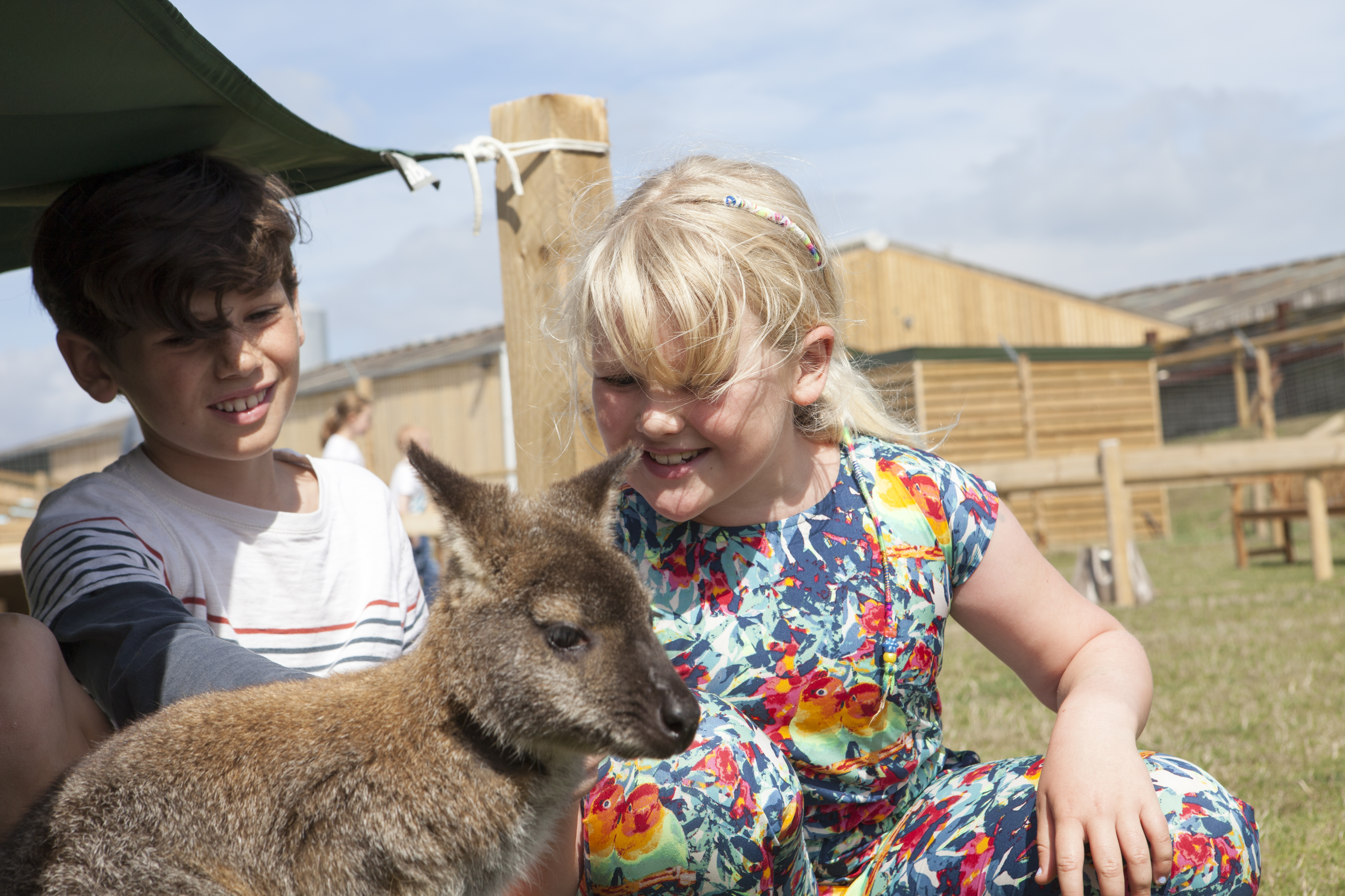 Kids with wallaby