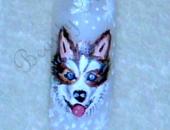 Modele unghii Husky nail art