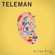 Brilliant Sanity - Teleman