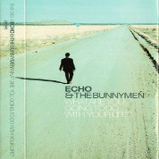 What Are You Doing - Echo And Bunnymen