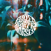 The Big What If  - Pulled Apart By Horses