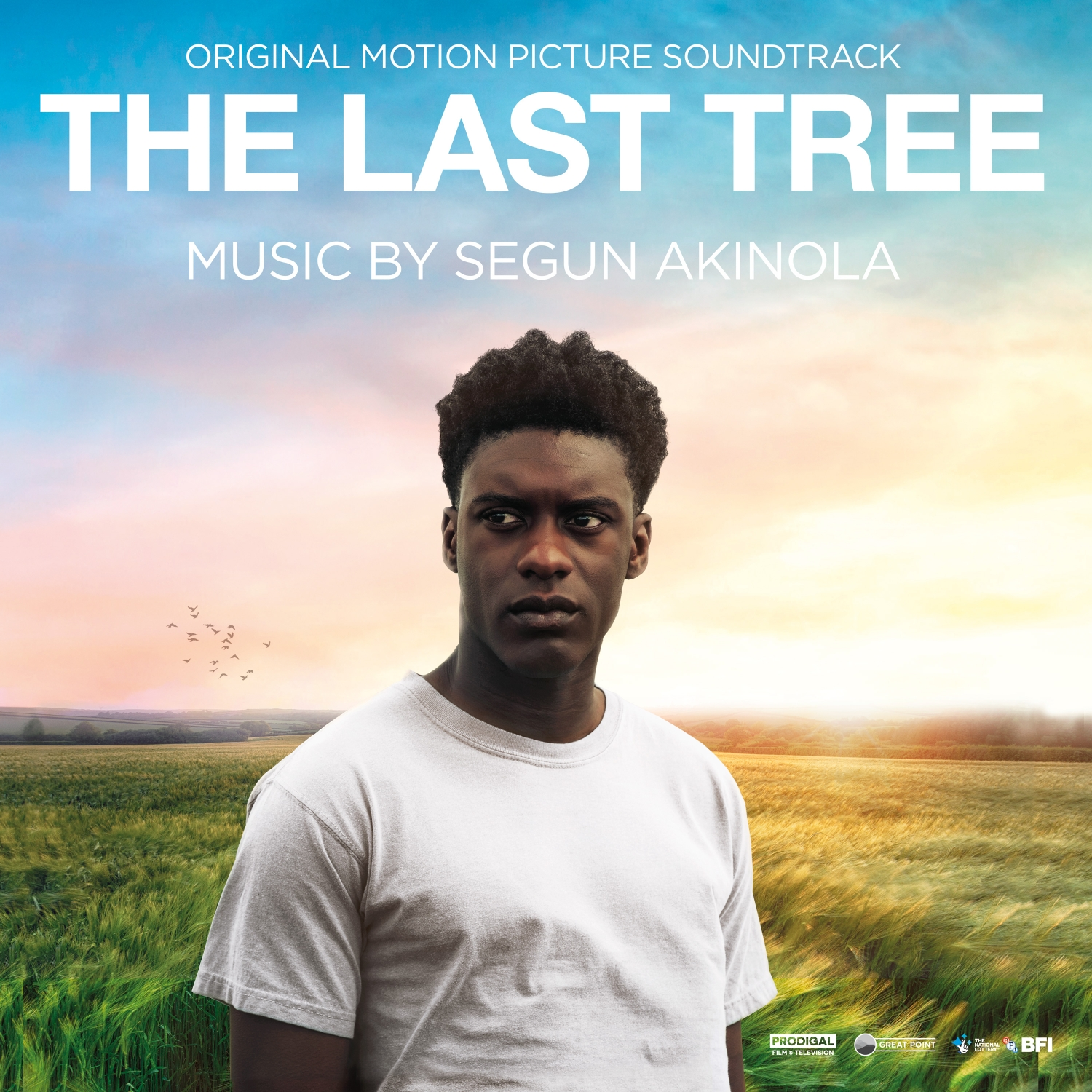 The Last Tree (Original Motion Picture Soundtrack) - Segun Akinola
