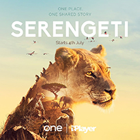 Serengeti - Will Gregory