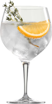 Gin & Tonic 6-Pack