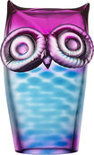 My Wide Life Owl Blue Pink