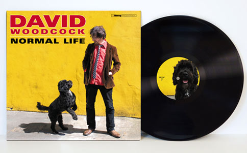 David Woodcock Normal Life Limited 180g Vinyl