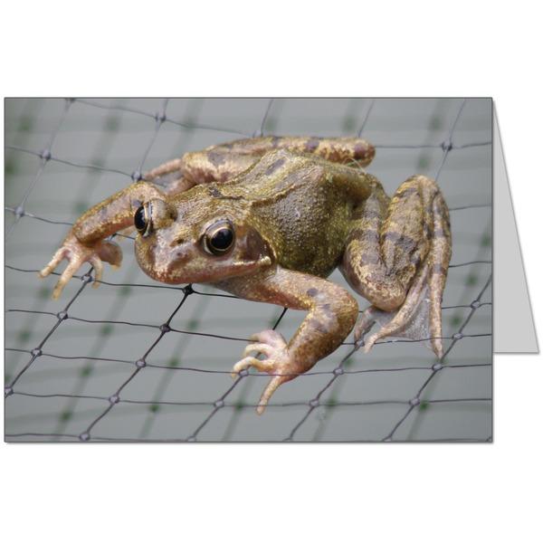 Frognet Card