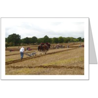 Ploughing Match in East Sussex, October 2011  Card