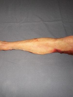 Severed Leg Prop · By: Joe Garton