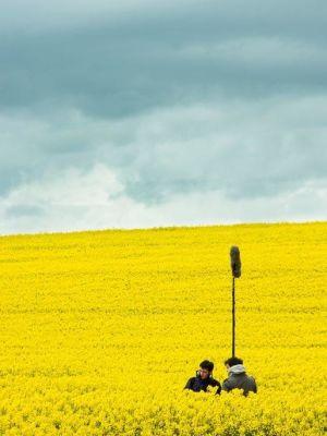 2014 Boom Boys in a field · By: Struan Robertson