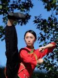 2016 Martial Arts 02 · By: Sammi Fang