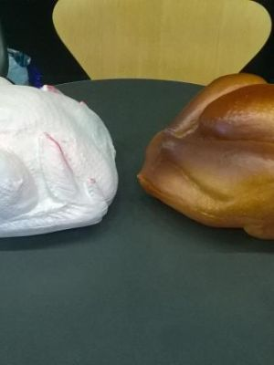Turkey repaint comparison (cooked to raw) · By: Matt Lee Newby