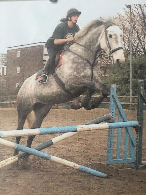2003 The grey mare & me · By: Diane Beveridge