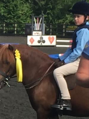 2017 Ed Showjumping · By: Charlotte Fitsall
