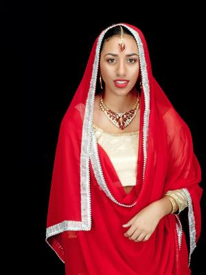 South Asian Traditional Wear