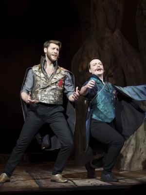2017 Cinderella's Prince (Into the Woods) · By: Bill Bradshaw