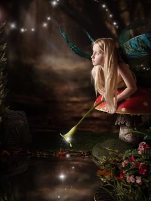 2016 Fairytale · By: Simon Anderson