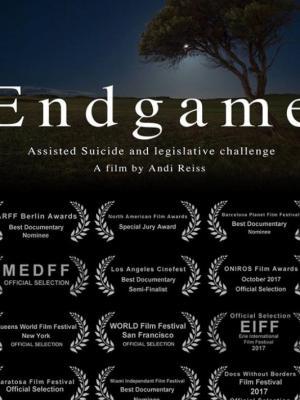2018 Endgame · By: Andi Reiss