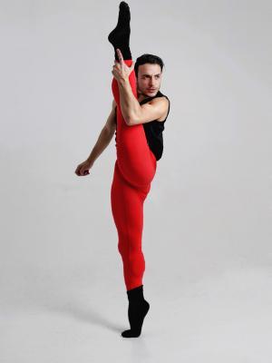 Stefanos Dimoulas, Dancer