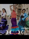 2014 Misión Flamenca · By: Altay Yildiz