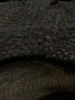 3D Model & texture project close up