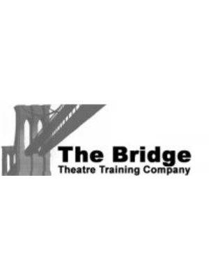 The Bridge Theatre Training Company