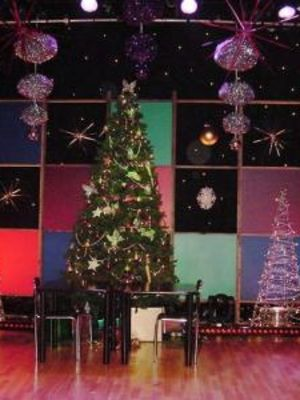 2009 This Christmas Show · By: Rebecca Morton