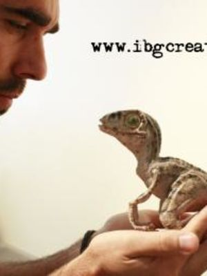 Ibg Creations