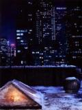2008 Snowy NY Rooftop · By: Arny Freytag