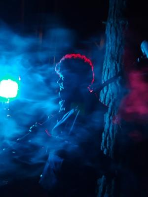 2019 Smokey on Set · By: Molly Anne Macken