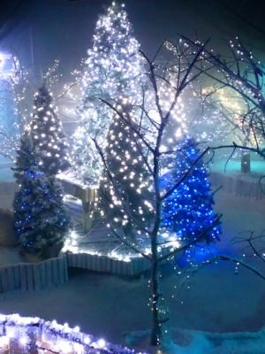 2017 CHRISTMAS GROTTO (WALK-THROUGH EXPERIENCE) WYEVALE GARDEN CENTRE, AYLESBURY · By: Phil Newman