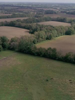 2020 Drone Op - Lexington, KY · By: Peter Dimako