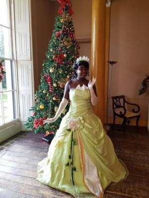 2020 Princess Tiana · By: Chanice hird