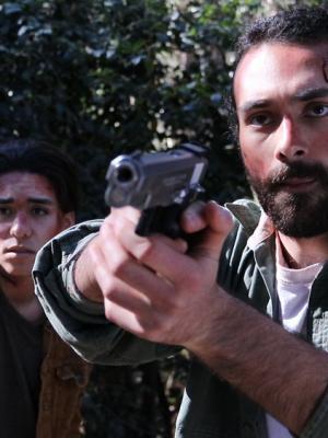 Daniel Mitchell-Rodriguez, Director
