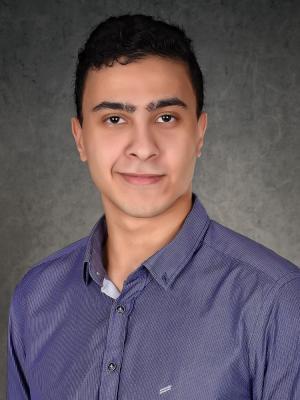 Amr ElNashar