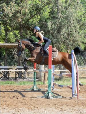 Horse Riding in Marrakech for an Equestrian Video