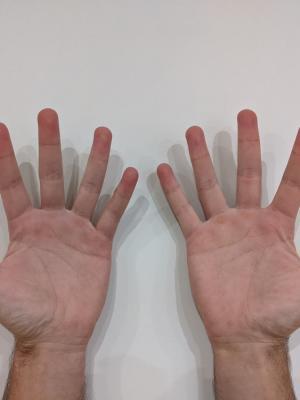 2020 Palm Hands