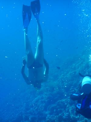 2019 Red Sea Diving
