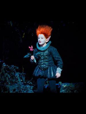 2016 'A Mid Summer's Nights Dream' My Puck, Glyndebourne Opera Running Wigs Department, 2016 · By: Glyndebourne inhouse photographer