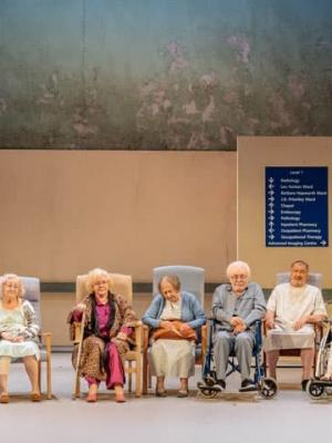"""2017 Alan Bennett's 'Allelujah"""" The Bridge Theatre, London Theatre Company. Wig and Make-Up Manager · By: The Bridge Theatre in-house Photographer"""