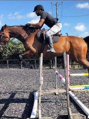 2021 Jumping my horse Sparkle · By: S francis