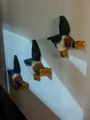 50s flying ducks · By: Jennifer Morgan