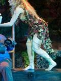2013 Titania - A Midsummer Night's Dream · By: John Camble