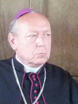 2014 Bishop Beausejour Raidres of the Lost Past · By: Peter McCrohon