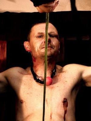 2014 Torture · By: Philip Gardiner
