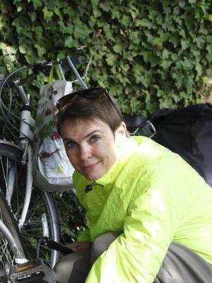 2015 Bike · By: Johnson Enterprises